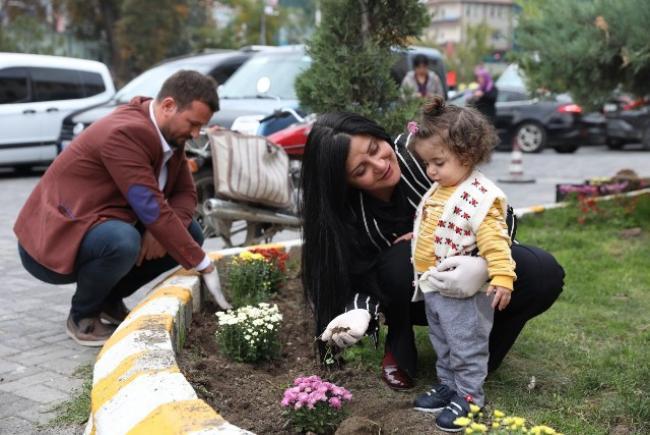 Kışlık Çiçekler İle Oturma Bankları Park Ve Bahçelere Bırakıldı