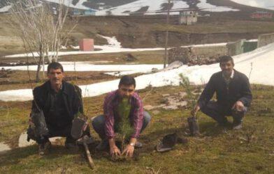 Iğdır Orman İşletme Müdürlüğü Kucak Köyüne De Fidan Diktirdi