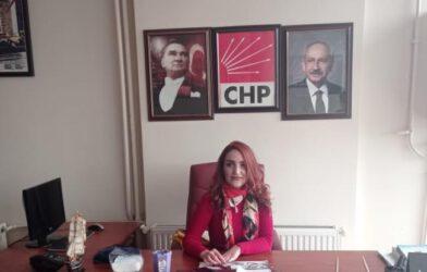 CHP Merkez İlçe Kadın Kolları Başkanlığına Seda Puğu Atandı