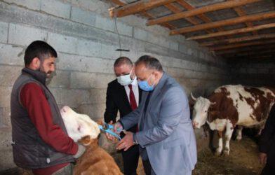 Melekli Beldesi Hayvancılık İşletmelerine Ziyaret
